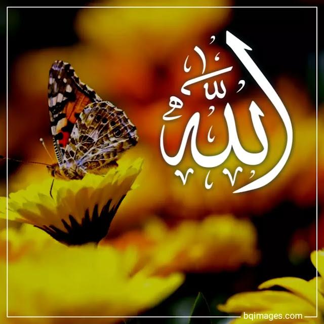 allah name images dp