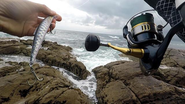 SE%25C3%2591UELO - Insistiendo en la costa en busca de lubinas 🐟🐟🐟