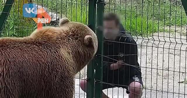Видео: подросток плюнул в морду медведю-авиатору из Калужской области