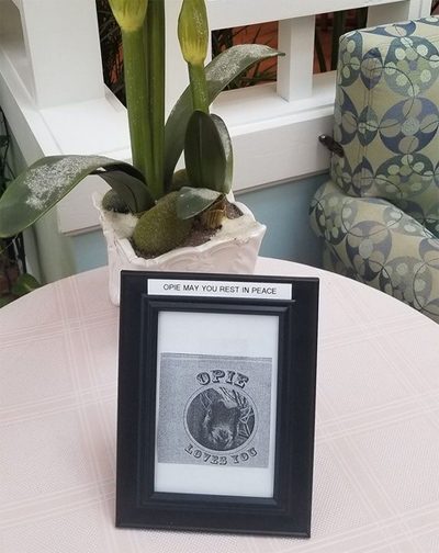 Opie honored by his elders at Cove's Edge