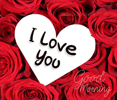 propose i love you image i love you images hd