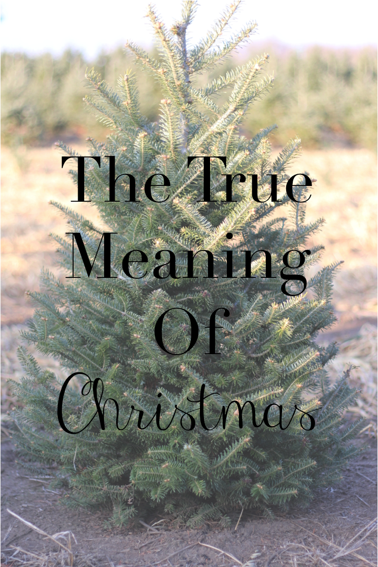 The True Meaning Of Christmas.The True Meaning Of Christmas Blogmas14 Day 9 Tay Meets