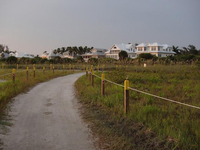 houses at dusk