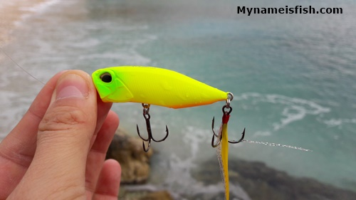 Duo lure for sea bass