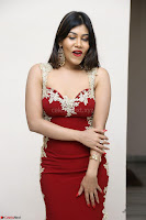 Rachana Smit in Red Deep neck Sleeveless Gown at Idem Deyyam music launch ~ Celebrities Exclusive Galleries 053.JPG