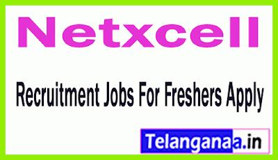 Netxcell Recruitment Jobs For Freshers Apply
