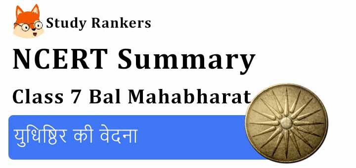 युधिष्ठिर की वेदना Class 7 Hindi Summary Bal Mahabharat