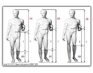 黃金比例與人體美學