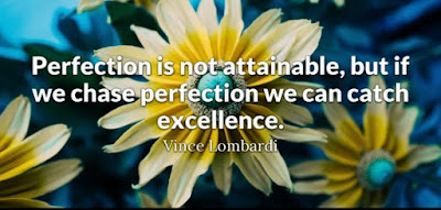 Excellence Quotes For Work