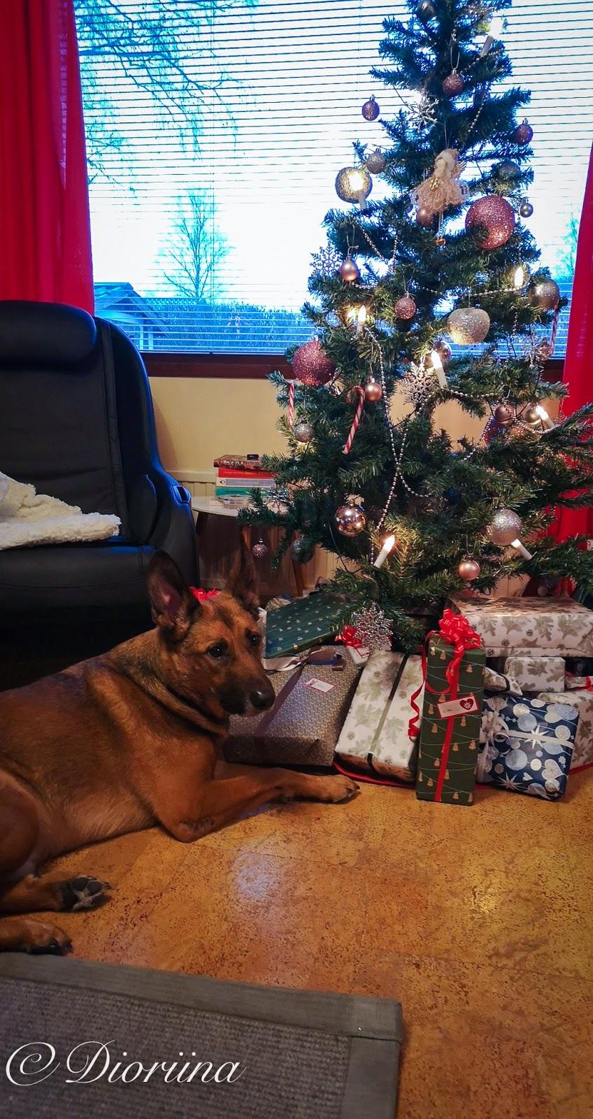 koska avataan lahjat