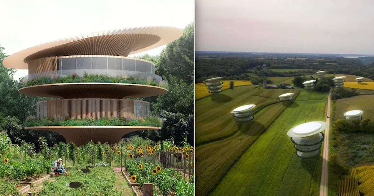 This Amazing Sunflower Home Was Designed To Follow The Rays Of The Sun