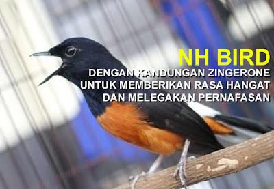 Kandungan NH BIRD Lebih Kompleks