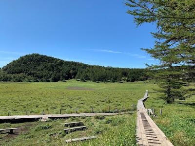 池の平湿原中央部