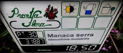PREÇO DA MUDA MANACÁ-DA-SERRA
