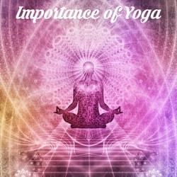 Importance of Yoga, benefits of Yoga