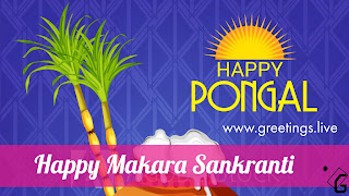Makara Sankranti Festival 2018 Wishes in English Ultra HD Image