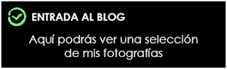 https://albumdeinstantes.blogspot.com/p/inicioblog.html