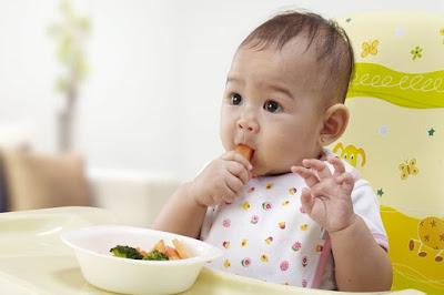 Baby Food Menu 8 Months