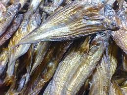 postingan kali ini admin ingin mencoba berbagi beragam kandungan gizi dari Ikan Salai 11 Kandungan Gizi Ikan Salai/Asap