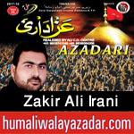 http://www.humaliwalayazadar.com/2017/09/zakir-ali-irani-nohay-2018.html