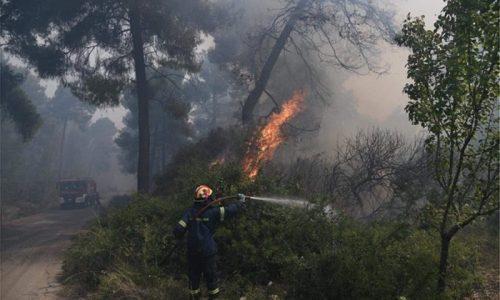Δυνάμεις και από την Ήπειρο κινητοποιεί η Πυροσβεστική Υπηρεσία προκειμένου να συνδράμουν στο έργο κατάσβεσης της μεγάλης πυρκαγιάς στην Κόρινθο.