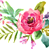 Water Colour Flower PNG 12