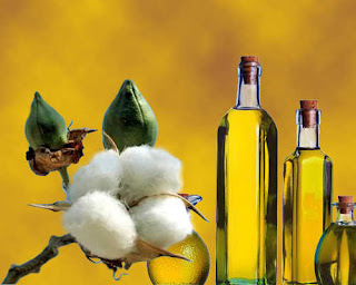 heart-attack-danger-low-cottonseed-oil