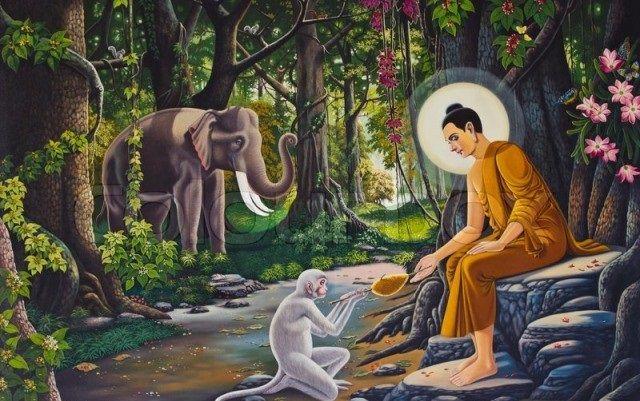 [27] Những Cảnh Giới - ĐỨC PHẬT và PHẬT PHÁP - Đạo Phật Nguyên Thủy (Đạo Bụt Nguyên Thủy)