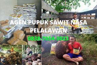 http://www.distributorpupuknasa.com/2020/03/agen-pupuk-sawit-nasa-pelalawan.html