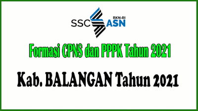 Alokasi Formasi CPNS dan PPPK KAB. BALANGAN Tahun 2021