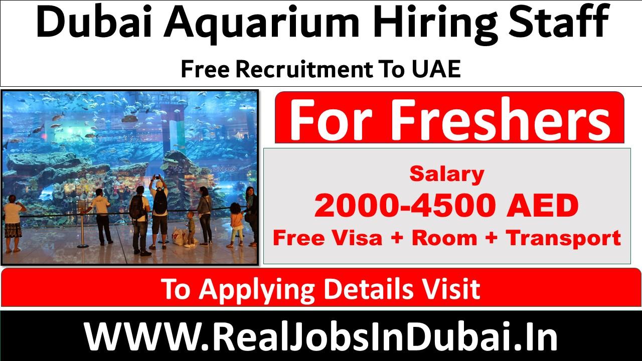 dubai aquarium careers, dubai mall aquarium careers