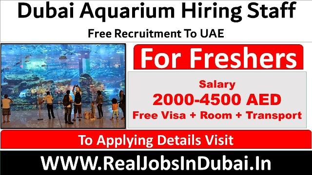Dubai Aquarium Jobs Vacancies In UAE - 2021