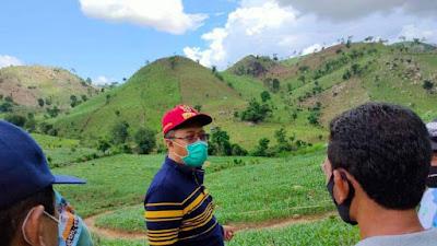 Hutan di Dompu Gundul, Gubernur NTB: Jagung Petani Yang Berasal Dari Hutan Negara Jangan di Beli