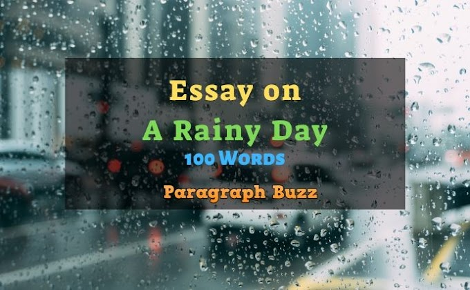 A Rainy Day Essay: 100, 200, 300, 400, 500 Words