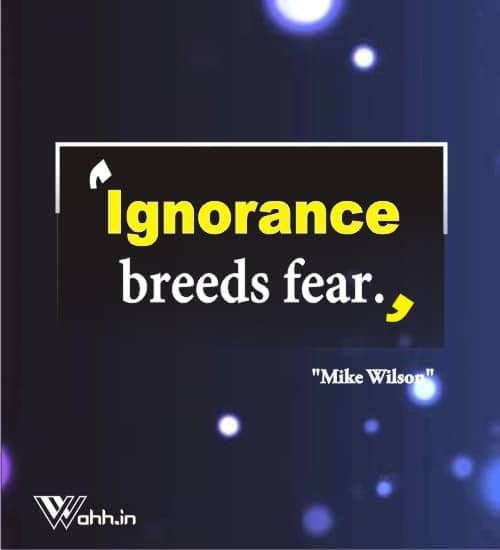 Mike-Wilson-ignorance-quotes