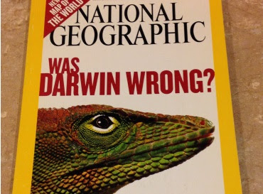 ¿Estaba Darwin equivocado?