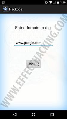 Hackode DNS Dig Tool Snapshot