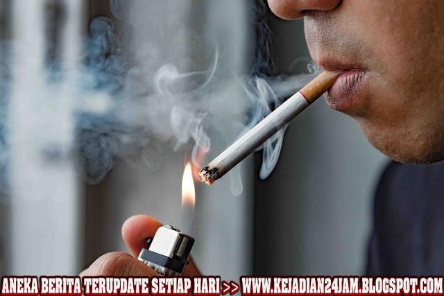 Merokok Banyak Atau Sedikit Tetap Ganggu Fungsi Paru Paru