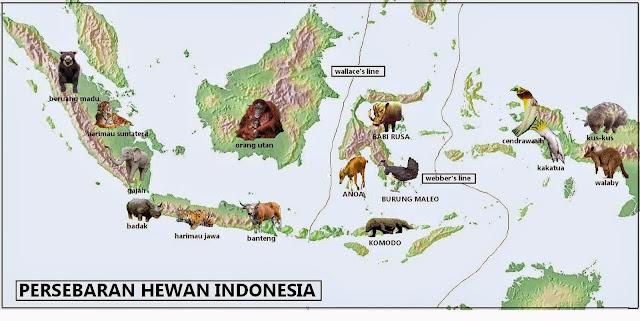 Beragamnya Flora dan Fauna Indonesia - Materi Kelas V Tema 1 Sub Tema 2 Pembelajaran 4