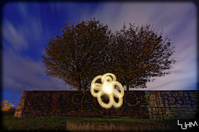 Lightpainting Blume