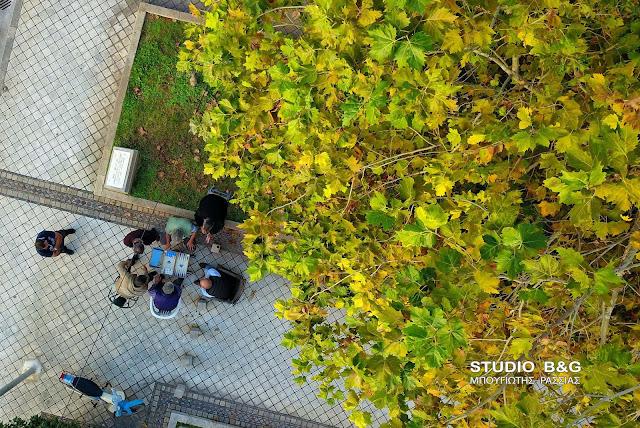Η φωτογραφία της ημέρας: Τάβλι κάτω από τον πλάτανο στο Άργος