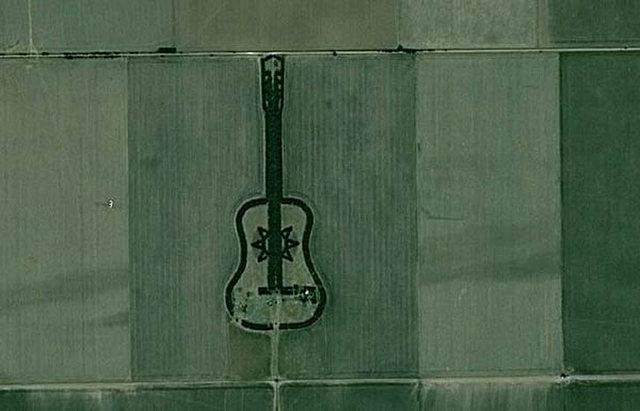 ureta, guitar tree, google gutiar, pedro martin, guitar shaped forest, argentina guitar, forest in argentina, pedro martins guitar, guitar farm,  the tree guitar, guitar on google, tree guitar, guitar garden, made from trees, argentina man, pedro martin, martin forest, pampas argentinas, argentina shape, guitar forest, guitar shaped forest argentina, argentina guitar forest, pedro martin ureta, guitar made of trees, pedro martin ureta google maps, forest guitar, argentina guitar,
