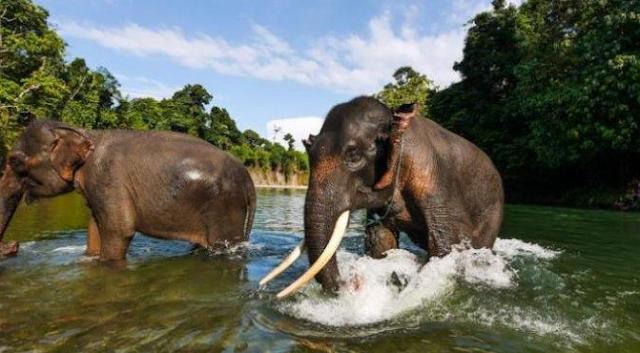 5 Wisata Alam di Medan ini Siap Memanjakan Liburanmu