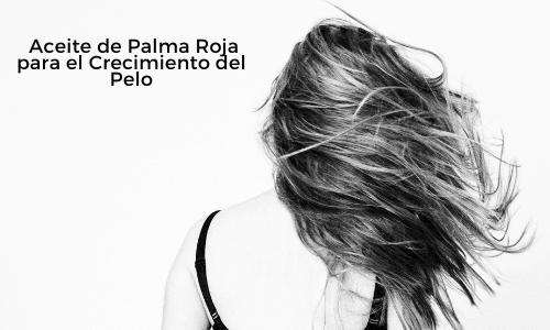Aceite de Palma Roja para el Crecimiento del Pelo