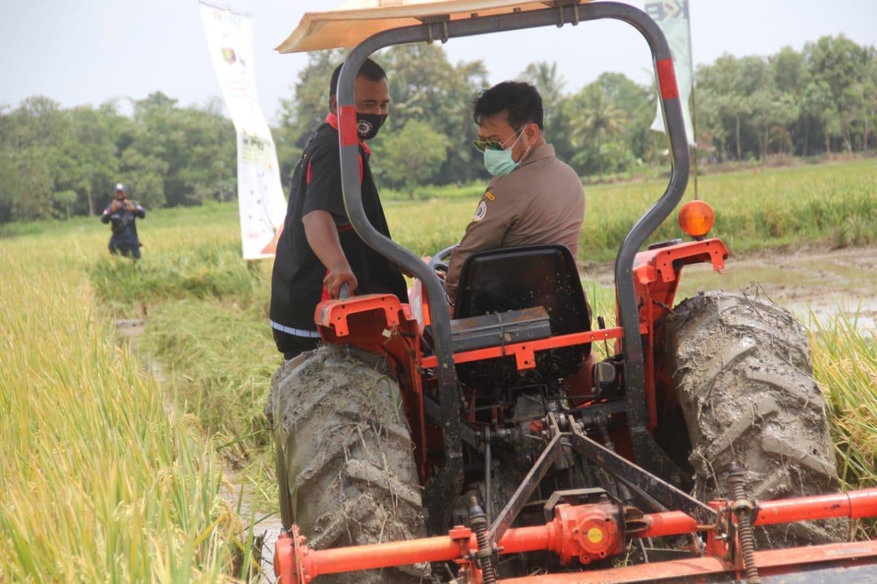 Alsintan Terbukti Tingkatkan Produktivitas Petani Banyuwangi