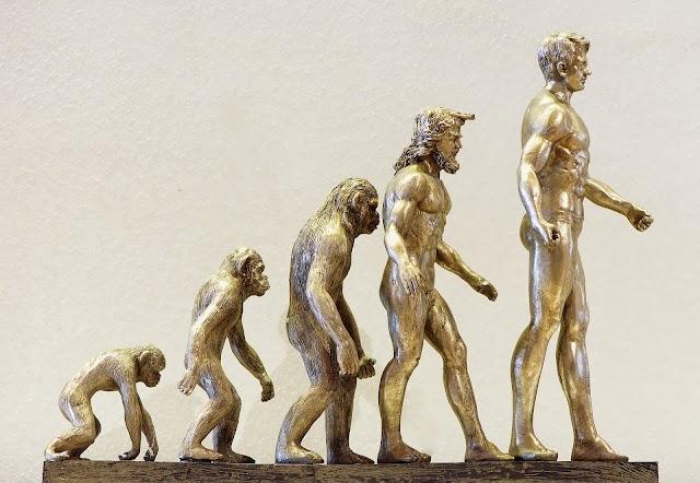 क्या बन्दर मनुष्यों के पूर्वज हैं ? Human ancestors - hindivigyan