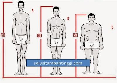 Cara Hitung Tinggi Badan Ideal Pria Dan Wanita