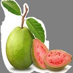 guava in spanish