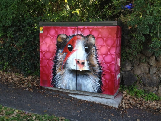 07-Piggy-Stardust-Paul-Walsh-Decorating-Utility-Boxes-with-Art-in-New-Zealand-www-designstack-co