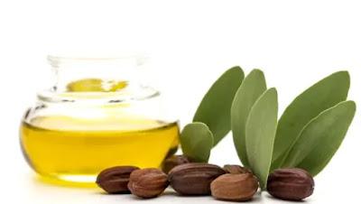 Jajoba yağı nedir ?, jajoba yağının faydaları nelerdir ?Jajoba yağı nasıl kullanılır ? jajoba yağı tüylenme yapar mı ?